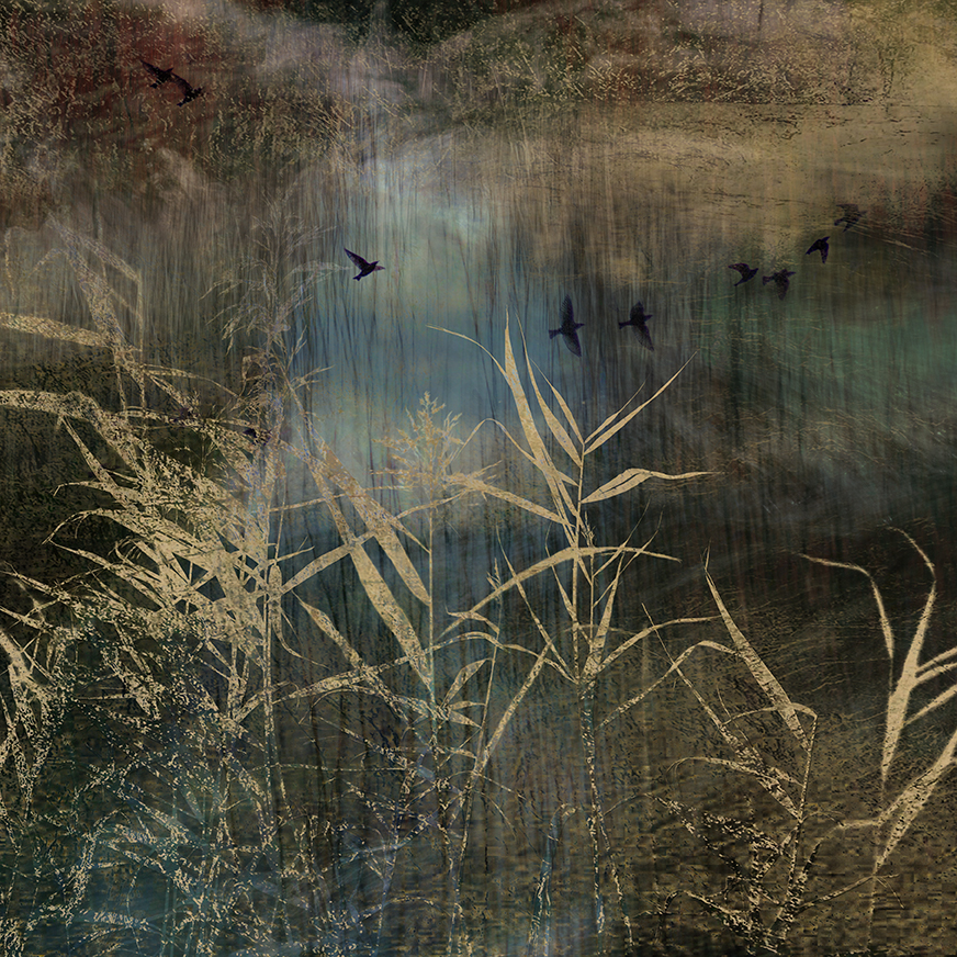 jo stephen photography waterscape gold