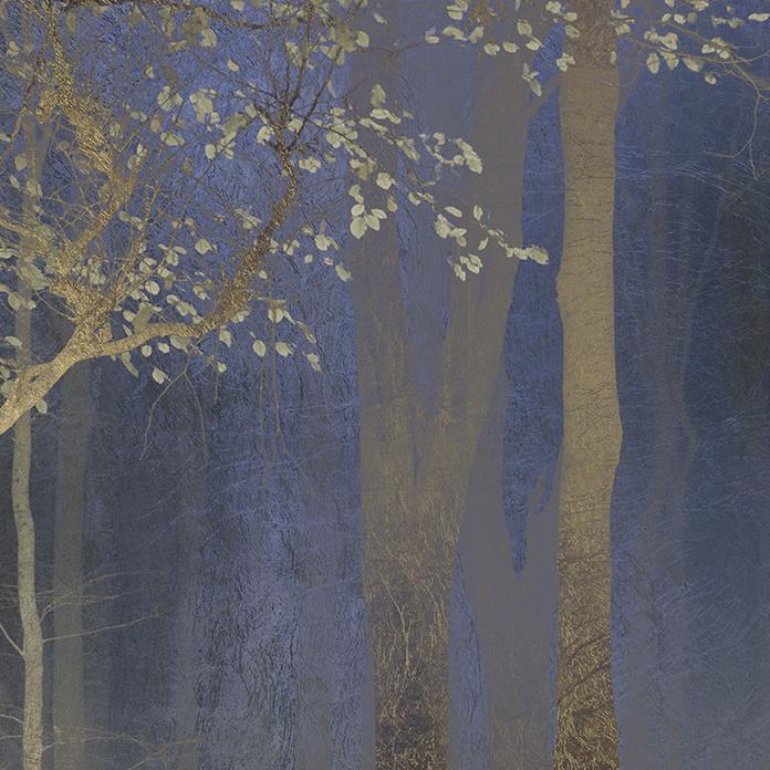 jo stephen photography trees gold