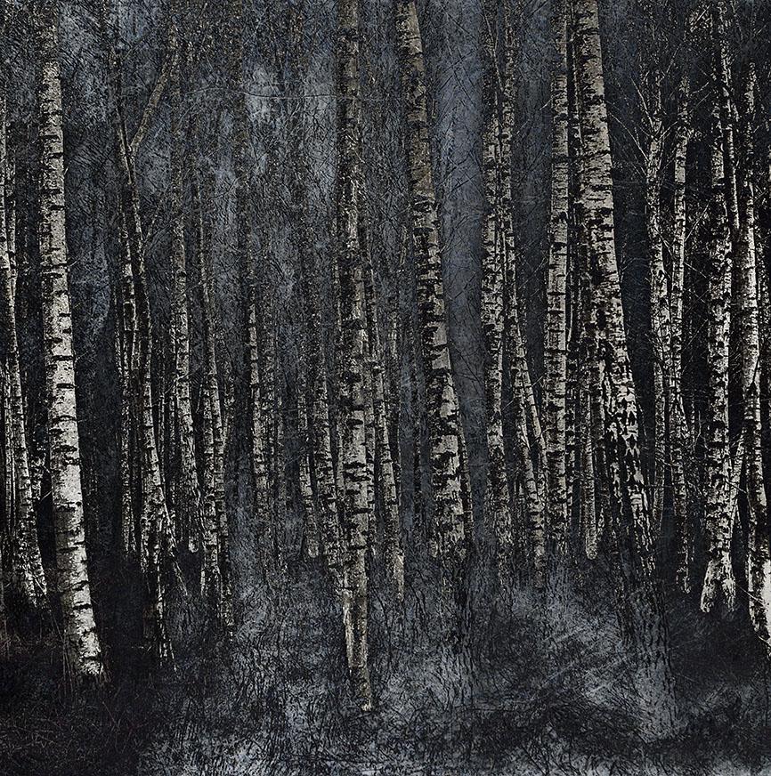 jo stephen silver birch photography