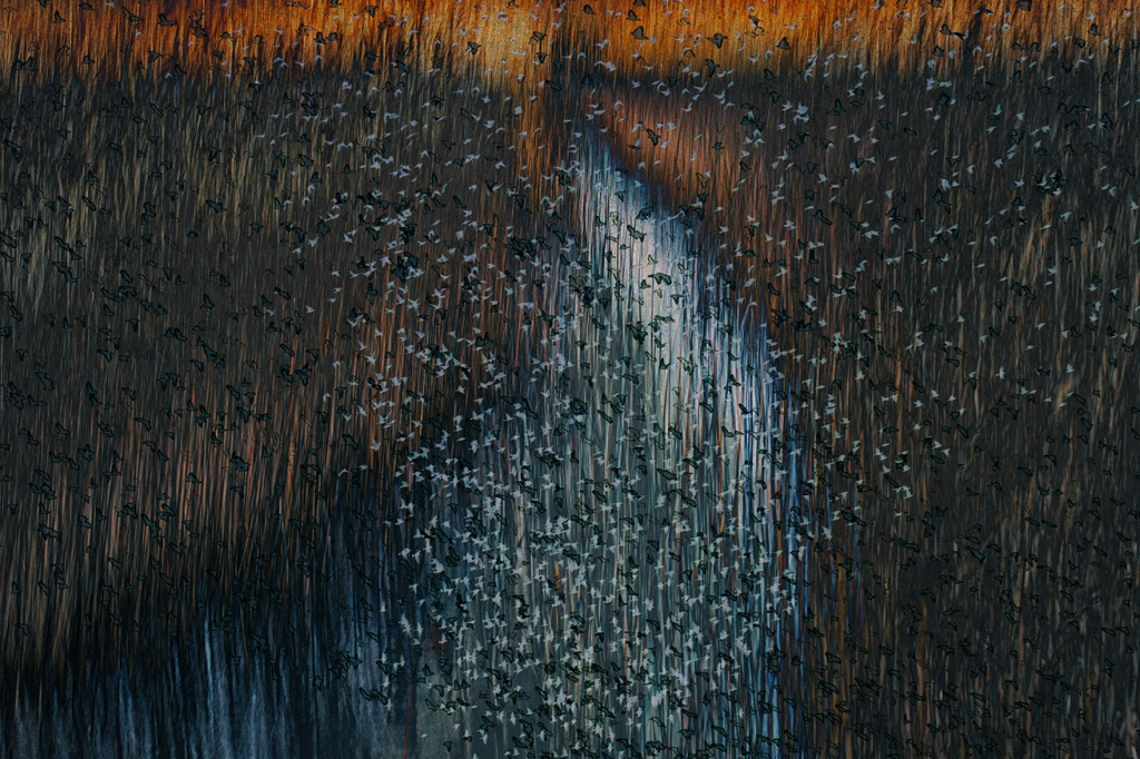 Jo Stephen Phorthography abstract landscape
